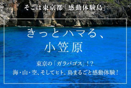 小笠原諸島に行ってみようかな・・・・
