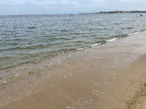 二色の浜 OWS練習会 綺麗 泳げる