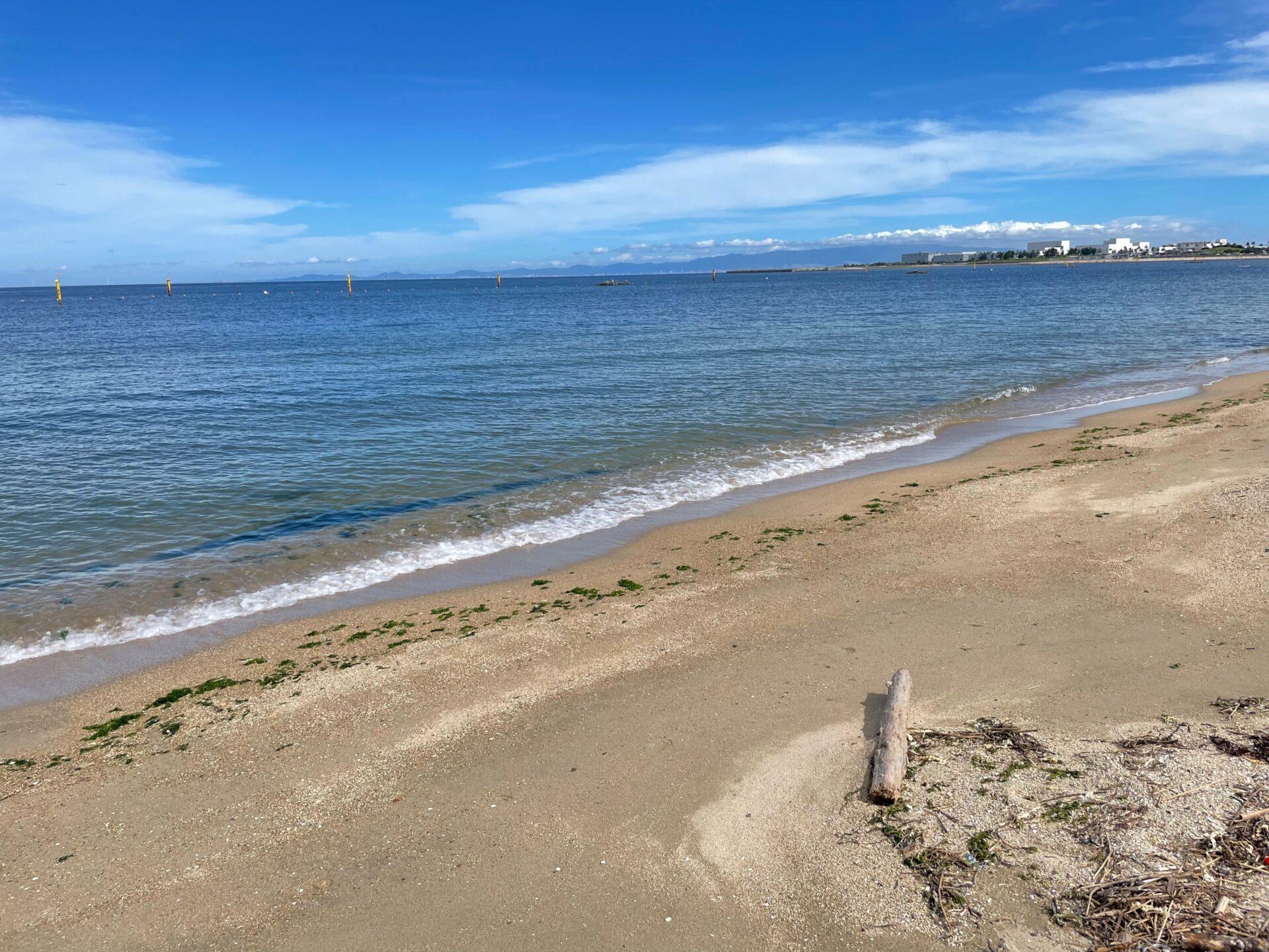 二色の浜 ランニングとOWS練習会 透明度