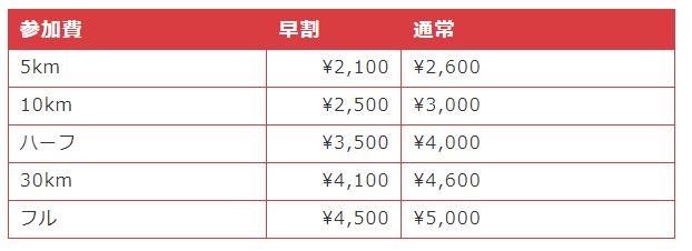 ロケットマラソン OSAKA 距離 費用