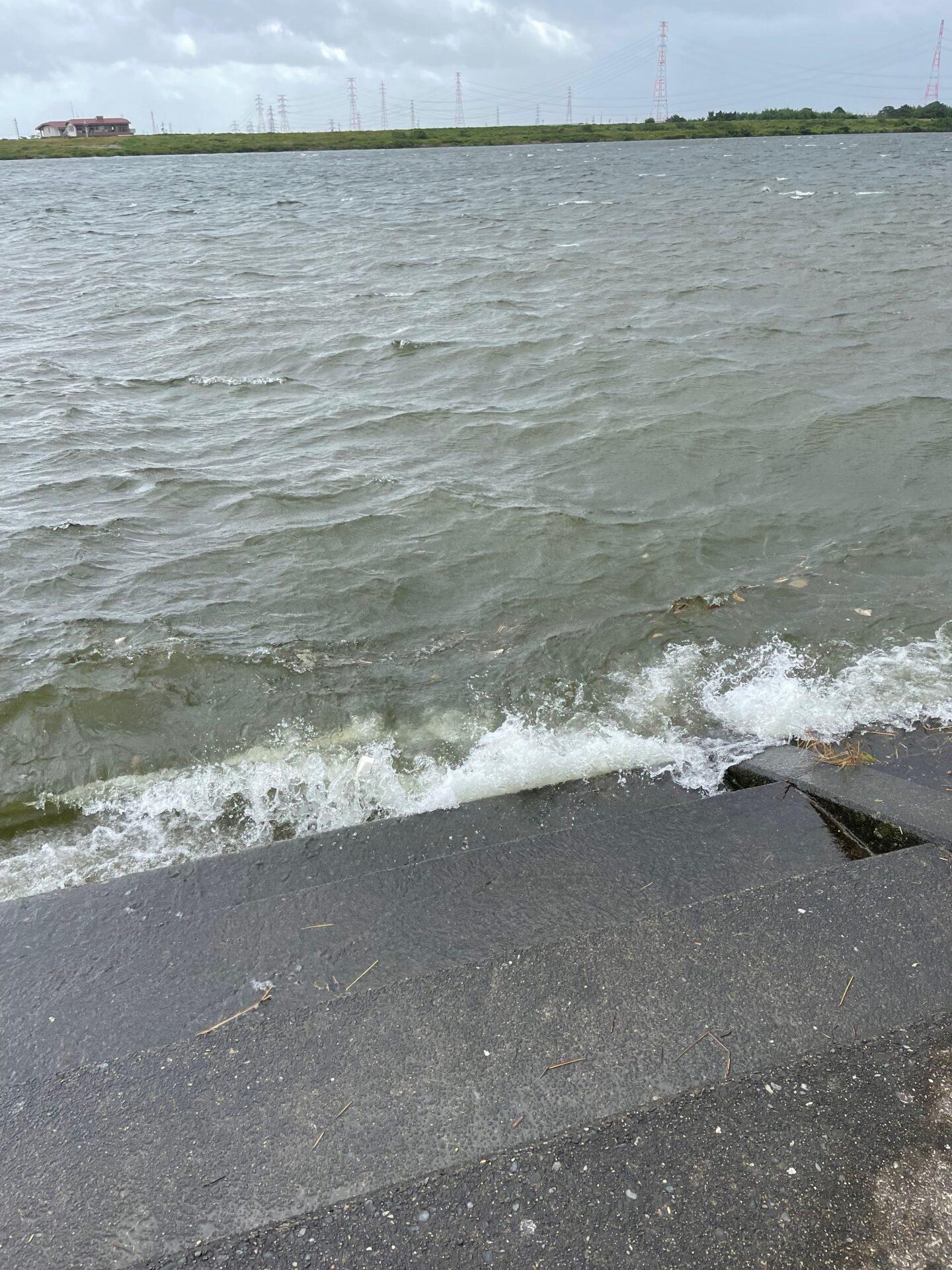 長良川トライアスロン スイム 川 水質