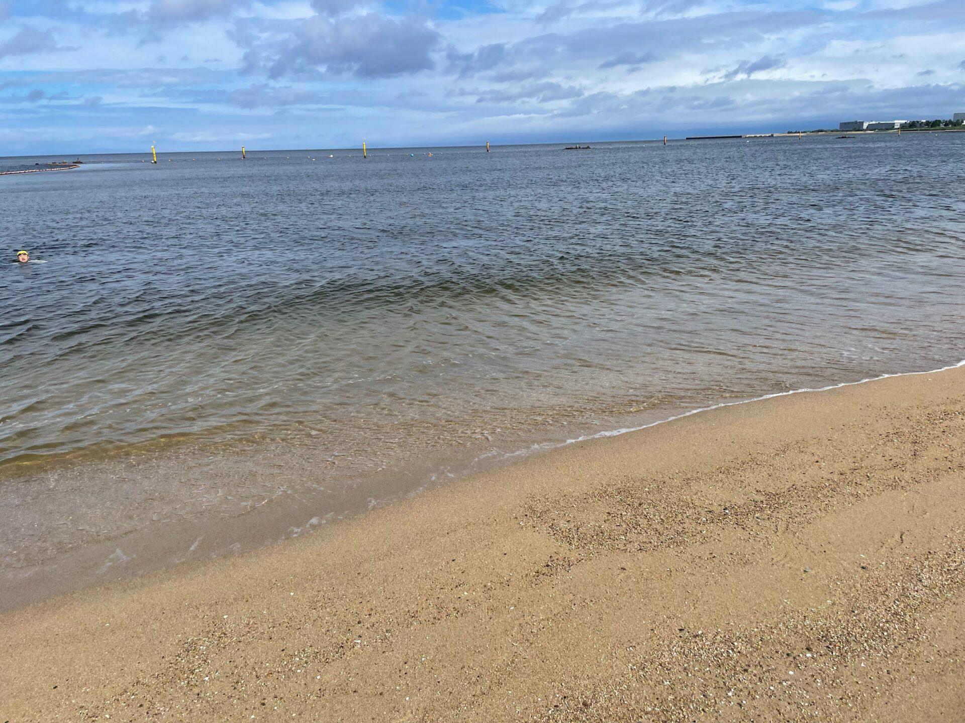 二色の浜 オープンウォータースイム